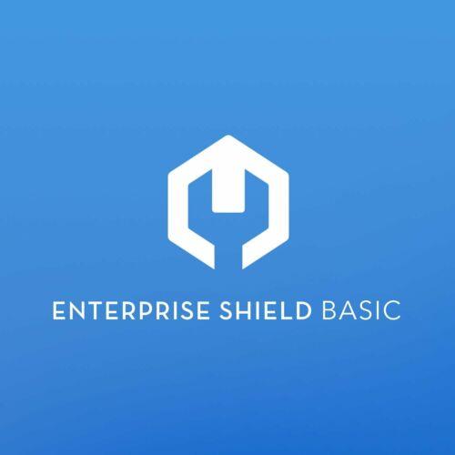 Enterprise Shield Basic biztosítás DJI M210 RTK V2 drónhoz