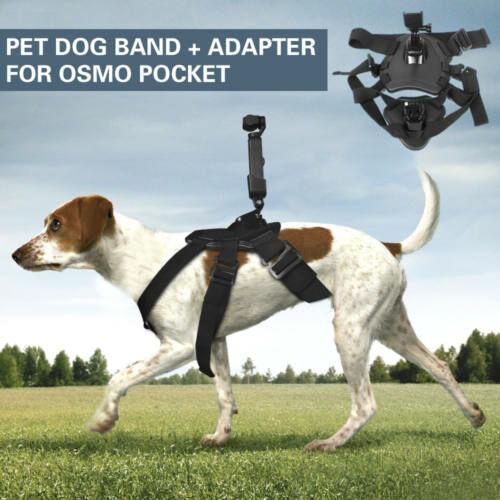 DJI Osmo Pocket kutya hám és multifunkcionális adapter (180 fokos)